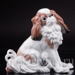 Статуэтка собаки Японский хин, Karl Ens, Германия, 1920-30 гг.